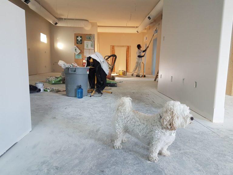 home renovation indoors